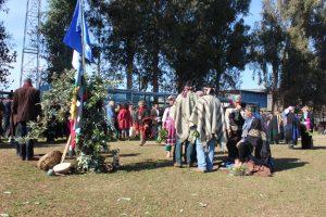 Mapuche 1 (1)